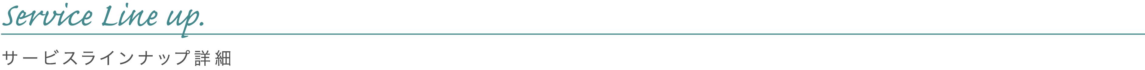 Service Outline / サービスラインナップ詳細